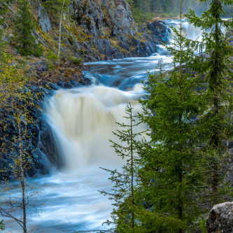 Waterfall Kivach in Kareliya - the second largest, after the Rhi
